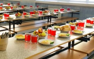 Мониторинг организации питания