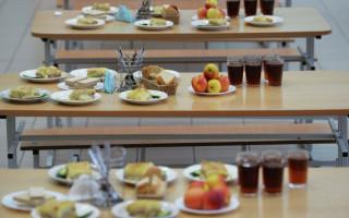 Мониторинг организации питания в общеобразовательных учреждениях
