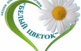 """Благотворительная Всероссийская акция """"Белый цветок"""" стартовала в нашем городе"""